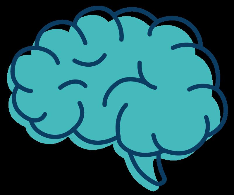 Novus Brain Illustration